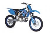 2010 TM Racing MX 300 photo