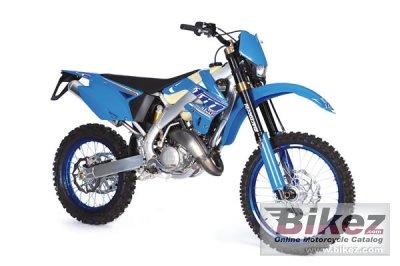 2010 TM Racing EN 144