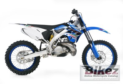 2012 TM Racing MX 250 photo