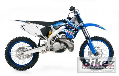 2012 TM Racing MX 300 photo