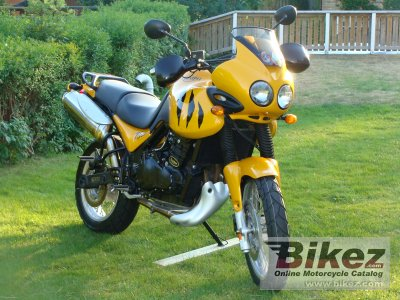1999 Triumph Tiger 900 photo