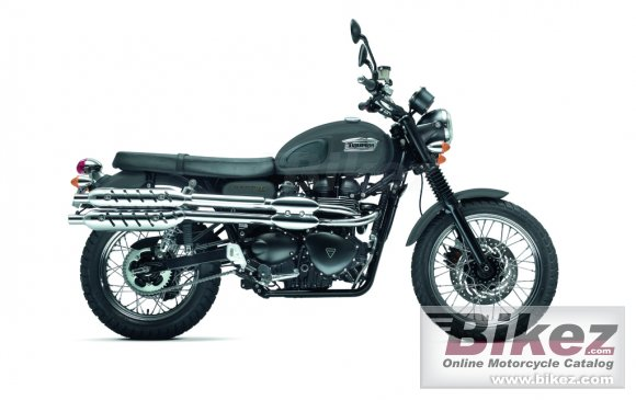 2013 Triumph Scrambler photo