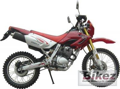 2007 Veli VL250GY-3