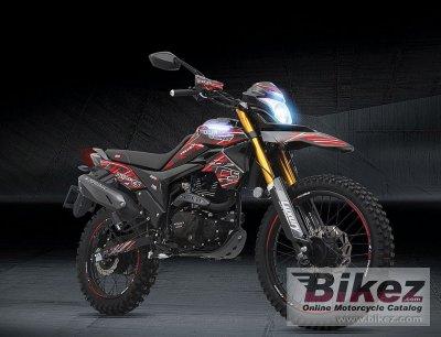 2020 Veloci Steeler Touring Pro XR 250