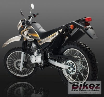2010 Vuka TM 125 photo