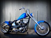 2010 West Coast Choppers Dominator photo