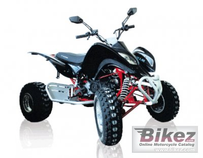 2011 WT Motors Kaos WT250 photo