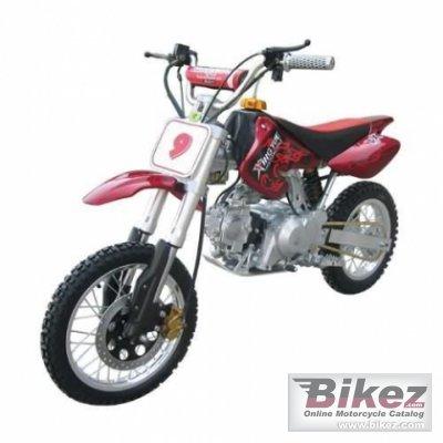 2008 Xispa XYQH806-110