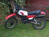 1981 Yamaha DT 175 MX photo