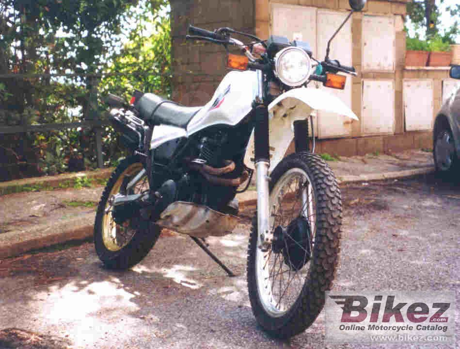 Big damiano migani xt 500 picture and wallpaper from Bikez.com
