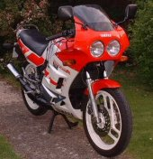 1987 Yamaha RD 350 photo