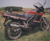1987 Yamaha RD 350 F photo