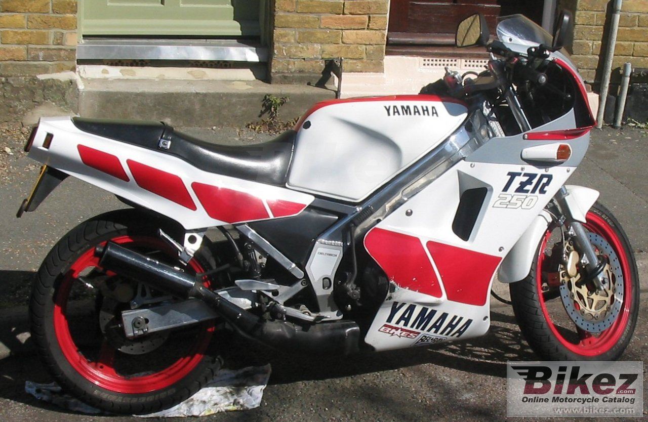 Russell Hayward tzr 250