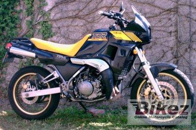 Decent 2 Stroke Dual Sports Adventure Rider
