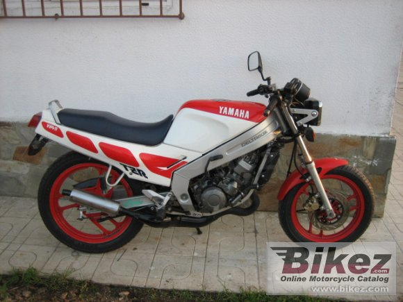 Yamaha Tzr 125 Review 1991 Yamaha Tzr 125