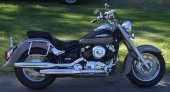 1998 Yamaha XVS 650 Drag Star Classic photo