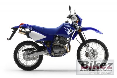 2007 Yamaha TTR250 photo
