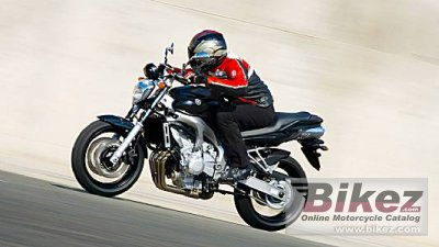 2008 Yamaha FZ6 ABS photo