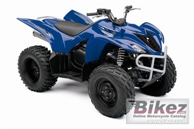 2009 Yamaha Wolverine 450 Auto 4x4 photo