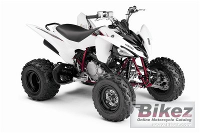 2009 Yamaha Raptor 250 photo