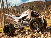 2009 Yamaha YFM250R photo