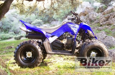 2009 Yamaha YFM90 photo
