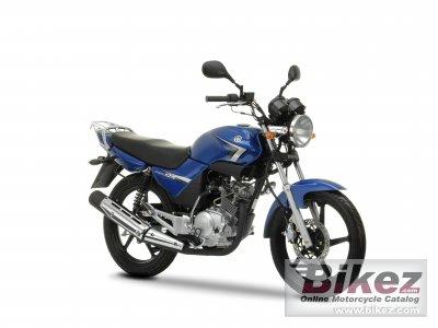 2009 Yamaha YBR125