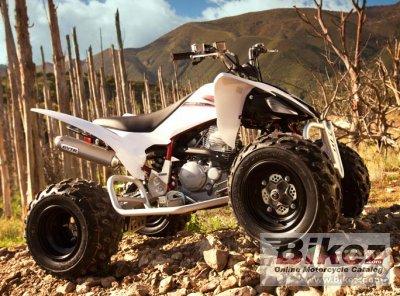 2009 Yamaha YFM250R
