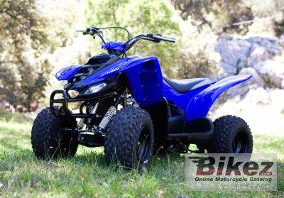 2009 Yamaha YFM50