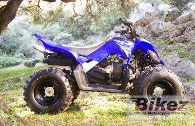 2009 Yamaha YFM90