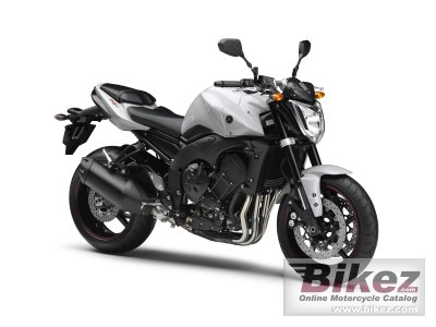 2010 Yamaha FZ1 photo
