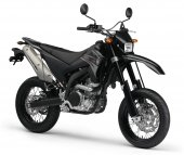 2010 Yamaha WR250X photo