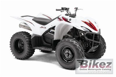 2010 Yamaha Wolverine 450 Auto. 4X4 photo