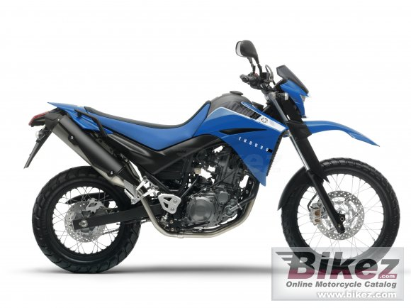 2010 Yamaha XT 660R photo