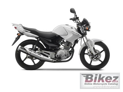 2010 Yamaha YBR 125 photo