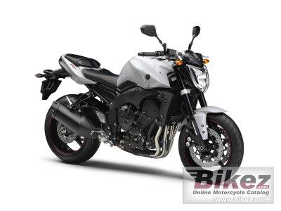 2010 Yamaha FZ1