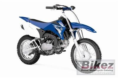 2010 Yamaha TT-R110E