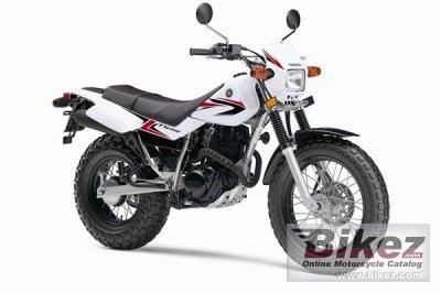 2010 Yamaha TW200