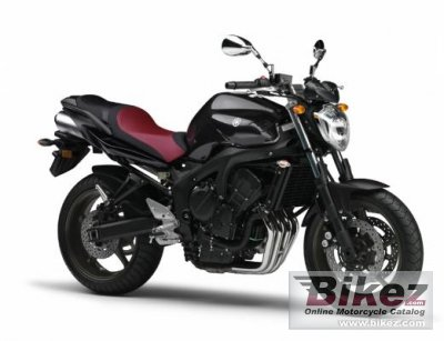 2011 Yamaha FZ6N photo
