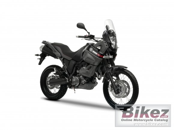 2011 Yamaha XT660Z Tenere ABS photo