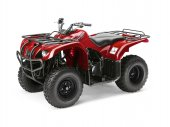 2011 Yamaha Big Bear 250