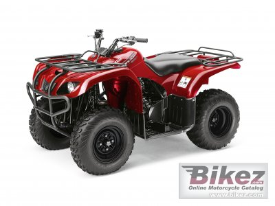 2011 Yamaha Big Bear 250 photo