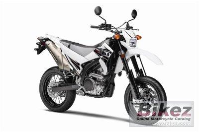 2011 Yamaha WR250X