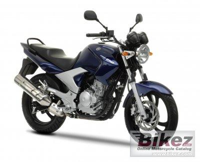 2011 Yamaha YBR250