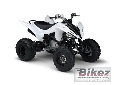 2011 Yamaha YFM250R