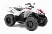 2012 Yamaha Wolverine 450 Auto 4x4 photo