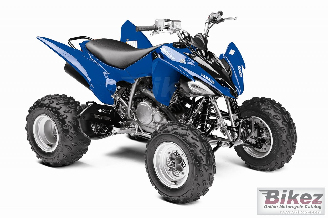 Big Yamaha raptor 250 picture and wallpaper from Bikez.com