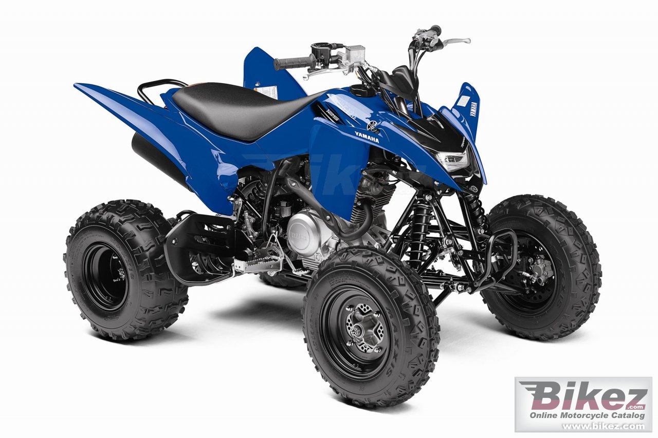 Big Yamaha raptor 125 picture and wallpaper from Bikez.com