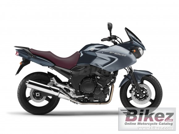 2013 Yamaha TDM 900 photo
