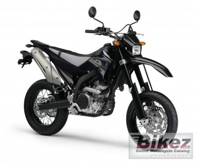 2013 Yamaha WR250X
